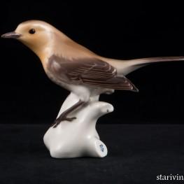 Птичка-малиновка, Nymphenburg, Германия, сер. 20 в
