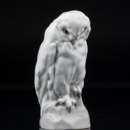 Белая сова, Heubach, Германия, пер. пол. 20 в