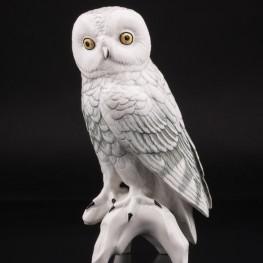 Белая сова, Karl Ens, Германия