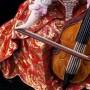 Дама с виолончелью, Volkstedt, Германия, кон. 19 в
