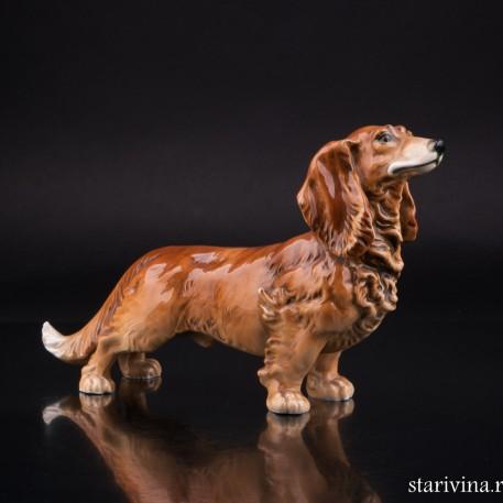 Фарфоровая статуэка собаки Длинношерстная такса, Karl Ens, Германия, 1920-30 гг.