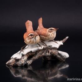 Крапивники на снегу, Giuseppe Tagliariol (Tay), Италия