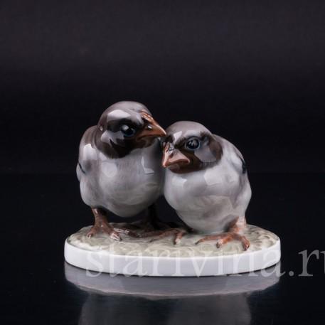Два птенца, Rosenthal, Германия