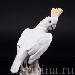 Попугай какаду , Augarten Wien, Австрия, сер. 20 в
