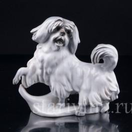 Собака, Karl Ens, Германия, 1920-30 гг