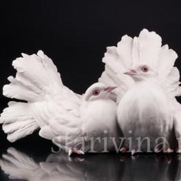 Голубь и голубка, Giuseppe Tagliariol (Tay), Италия, сер. 20 в
