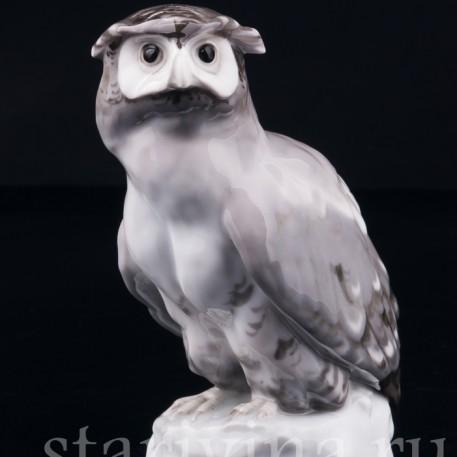 Ушастая сова, Karl Ens, Германия, нач. 20 в