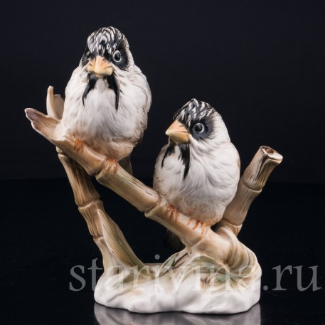 Усатые ткачи на бамбуке, Karl Ens, Германия, вт. пол. 20 в