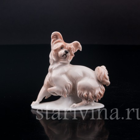 Фарфорвая статуэтка собаки Болонка, миниатюра, Rosenthal, Германия, 1919-22 гг.
