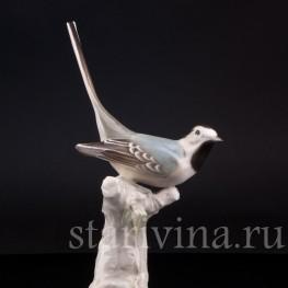 Статуэтка птицы из фарфора Трясогузка, Hutschenreuther, Германия, 1945-49 гг.