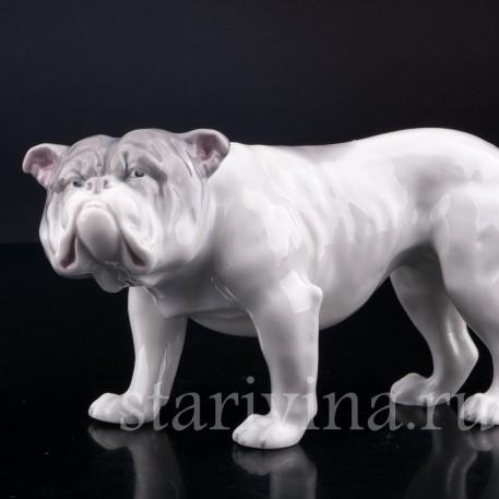 Фигурка собаки из фарфора Английский бульдог, Heubach, Германия, нач. 20 в.
