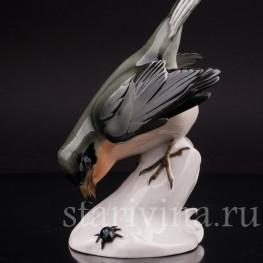 Фигурка птицы из фарфора Сорокопут, Schwarzburger, Германия, перв. пол. 20 в.