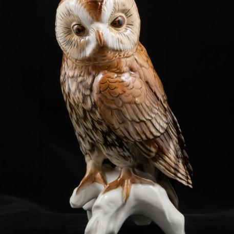 Большая сова, Karl Ens, Германия