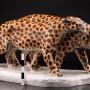 Два леопарда, Schwarzburger, Германия, 1909-1925 гг