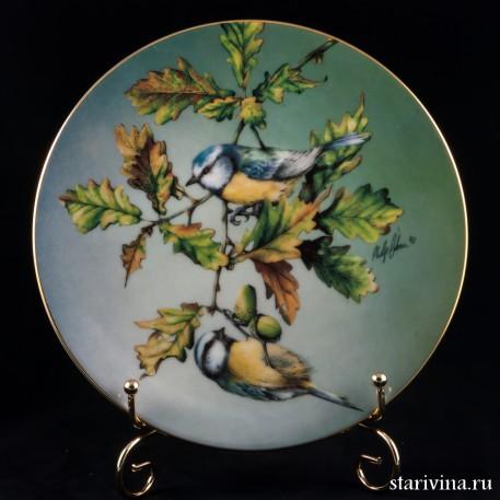Лазоревка, Hamilton Collection, Великобритания