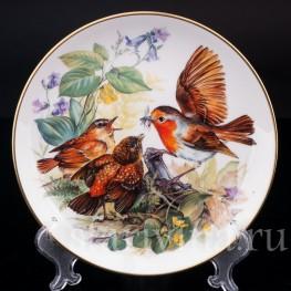 Декоративная фарфоровая тарелка Голодные малиновки, Hutschenreuther, Германия, 1993.